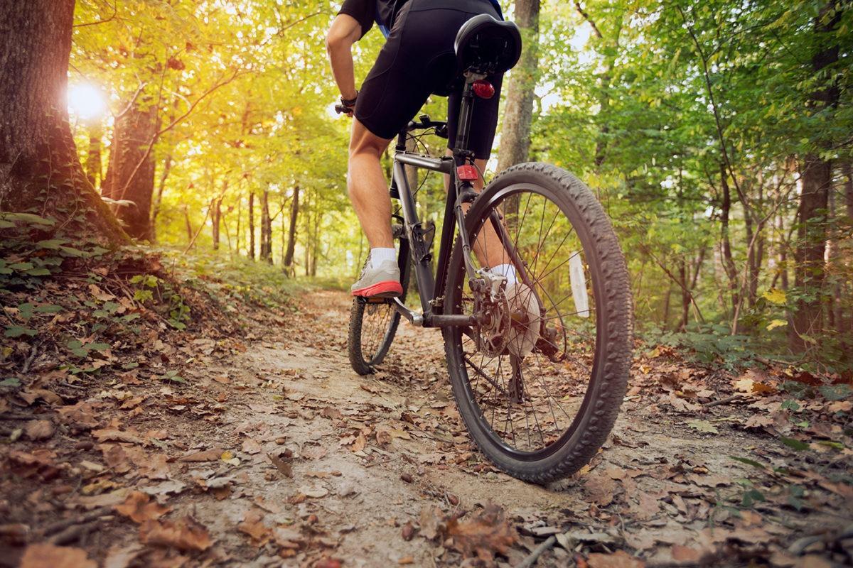 Mountainbikes und viel mehr bei Ihrem Radladen in Bonn